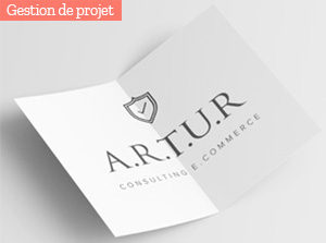 consulting-e-commerce